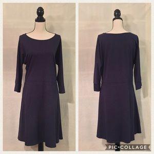 Toad & Co blue 3/4 sleeve boatneck Mizdress dress